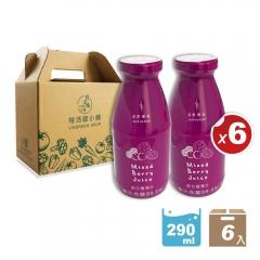 綜合莓果汁(290ml/瓶)-6入提盒組【特活綠小舖】