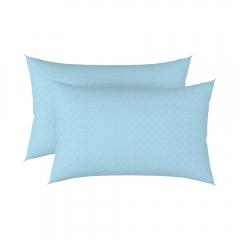 H&H抗菌涼感枕套2入組 枕套