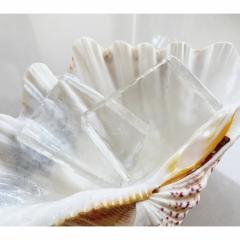 【Dr.歐思佛】藻酸微晶皂